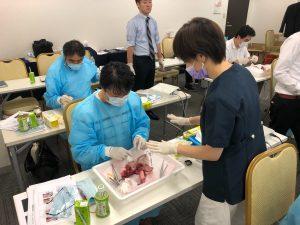 豚の顎骨実習